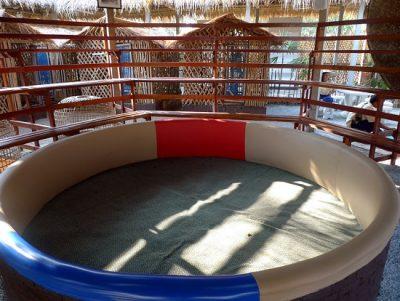 Instalaciones Para Gallos De Pelea
