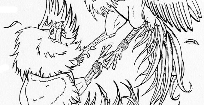 dibujos de gallos finos  imagenes de gallos
