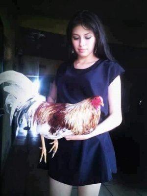 Imagenes De Mujeres Con Gallos Finos