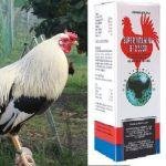 Las Mejores Vitaminas Y Medicamentos Para Gallos De Pelea