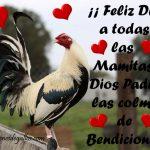 Frases Para El Dia De La Madre Con Imagenes De Gallos Finos