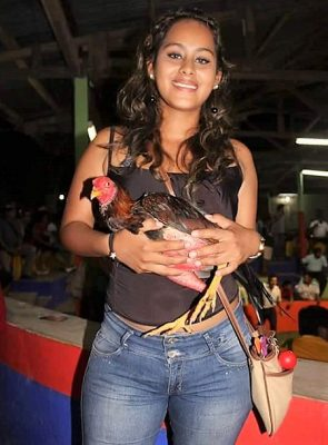 Descargar Fotos De Chicas Con Gallos De Pelea