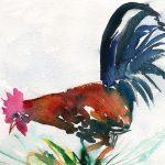 Imagenes De Gallos Finos En Pintura