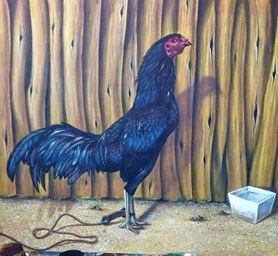 Pinturas De Gallos Finos De Pelea Al Oleo